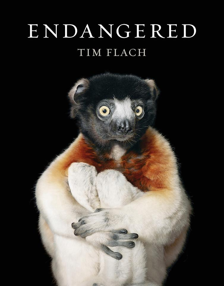 <p>Endangered unfolds as a series of vivid interconnected stories that pose gripping moral dilemmas, unforgettably expressed by more than 180 of Flach's incredible images. (Tim Flach, from Endangered by Tim Flach) </p>