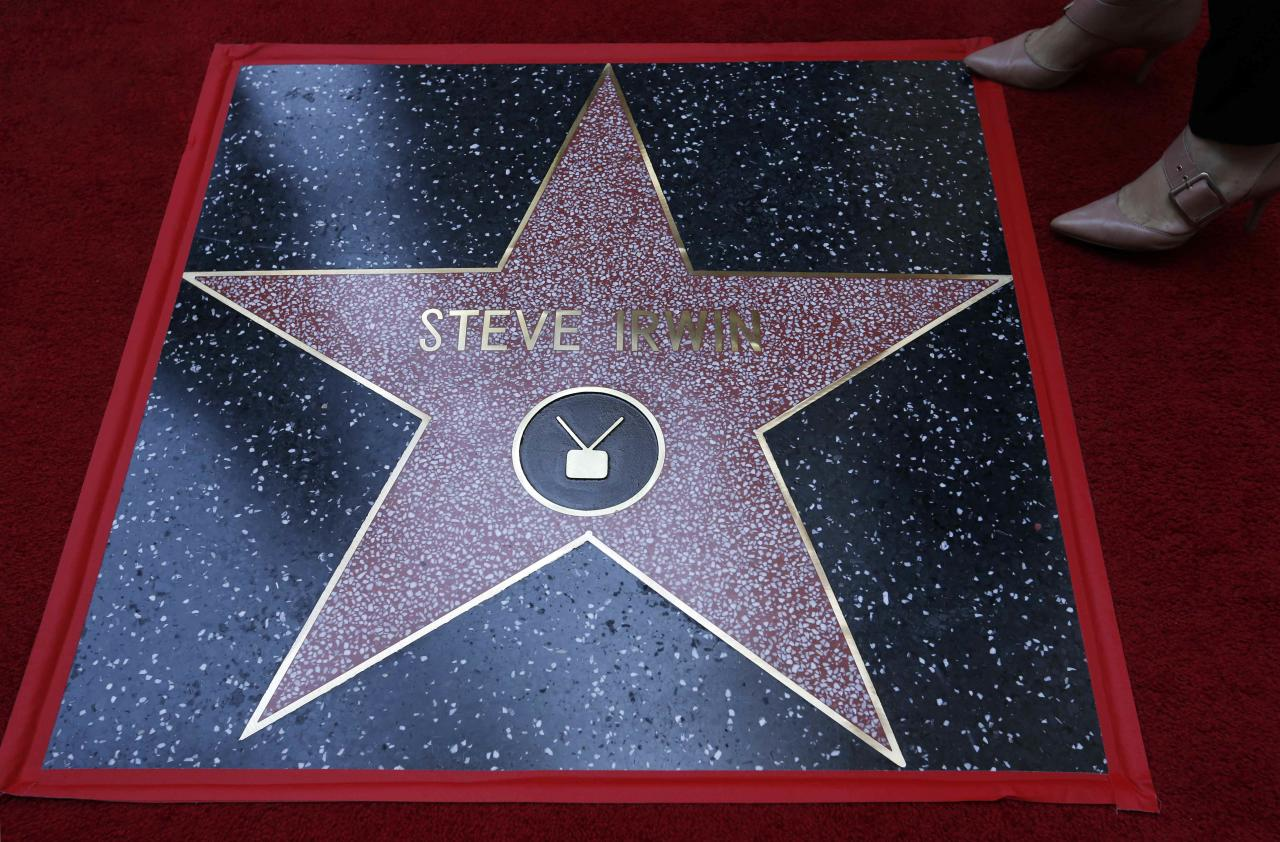Steve Irwin's star is pictured after the posthumous unveiling of a star on the Hollywood Walk of Fame in Los Angeles, U.S., April 26, 2018. REUTERS/Mario Anzuoni