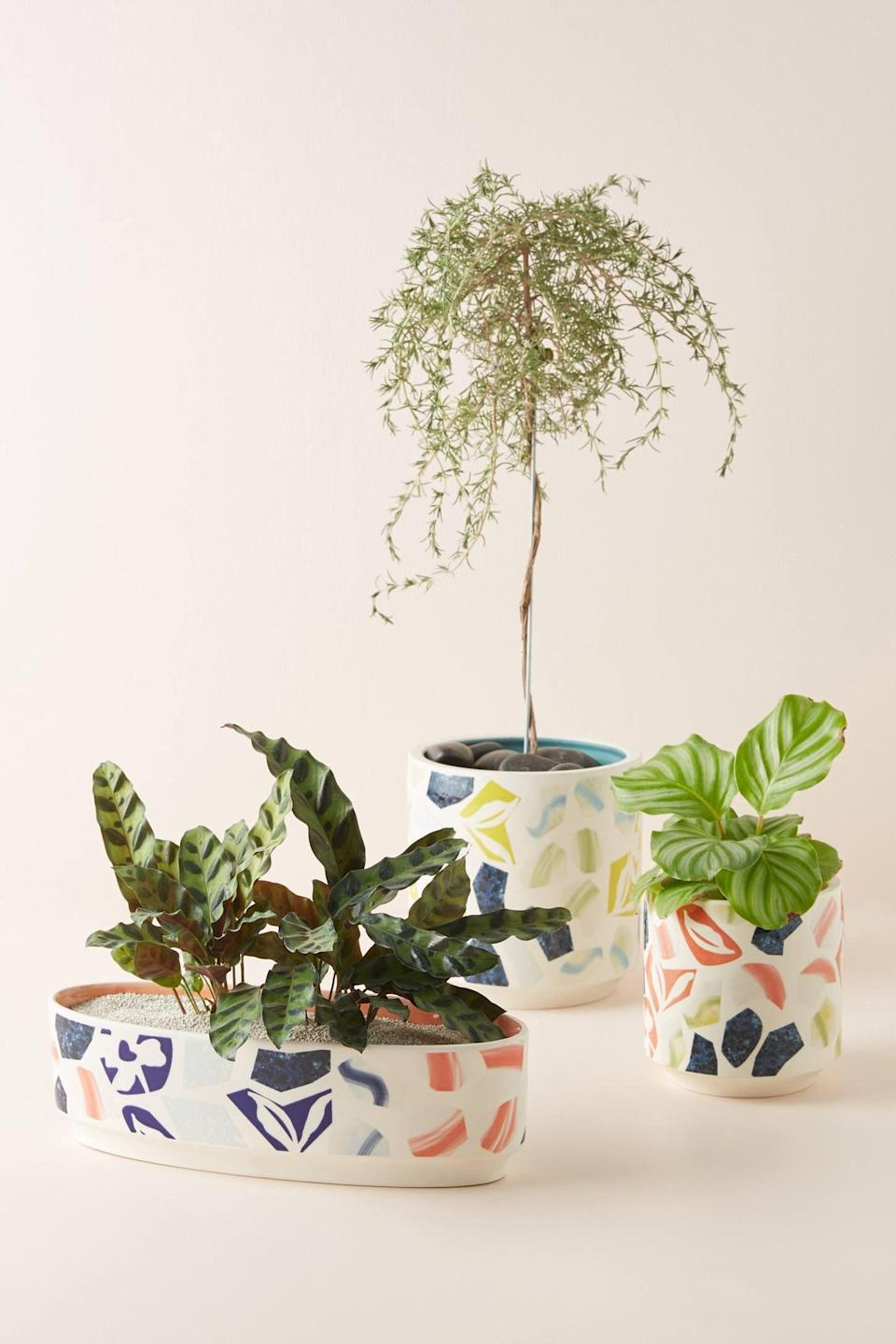 """<p><strong>Anthropologie</strong></p><p>anthropologie.com</p><p><strong>$35.20</strong></p><p><a href=""""https://go.redirectingat.com?id=74968X1596630&url=https%3A%2F%2Fwww.anthropologie.com%2Fshop%2Fandrea-planter&sref=https%3A%2F%2Fwww.goodhousekeeping.com%2Fhome%2Fdecorating-ideas%2Fg37159808%2Fbest-home-products-july-2021%2F"""" rel=""""nofollow noopener"""" target=""""_blank"""" data-ylk=""""slk:Shop Now"""" class=""""link rapid-noclick-resp"""">Shop Now</a></p><p>It's always a good idea to bring the outdoors in. You'll have no issues doing just that if this terrazzo-inspired planter is part of your green thumb goal.</p>"""