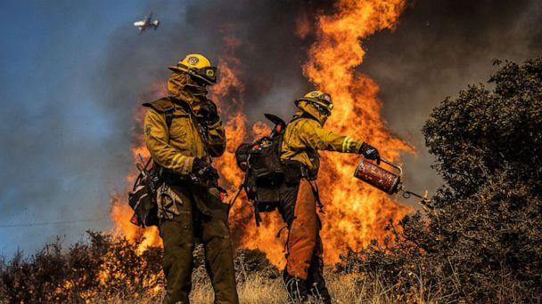PHOTO: Firefighters with the Marin County Fire Department burn brush ahead of the Kincade Fire in an effort to reduce fuel and increase containment, in the Geysers, a geothermal field in California on Friday, Oct. 25, 2019. (Max Whittaker/The New York Times/Redux)
