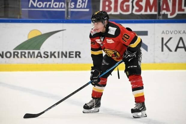 Due to the cancellation of the OHL's 2020-21 season, Windsor Spitfires forward Matt Maggio, 18, spent the past few months playing in a professional league in Sweden.
