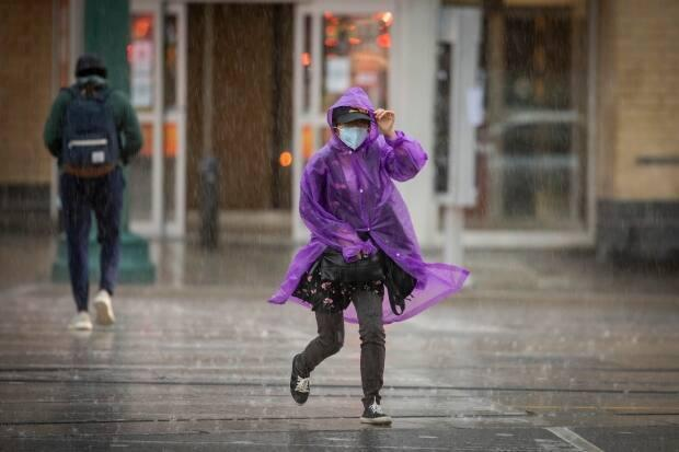 Environment Canada has issued a severe thunderstorm warning for the city of Toronto for Thursday afternoon into the evening.  (Evan Mitsui/CBC - image credit)