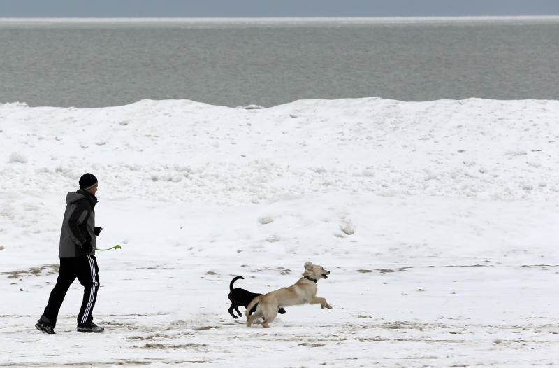 A jogger runs with two dogs in the snow along the north side of Lakeshore Drive in Chicago, Friday, Jan. 25, 2013. The 1.1 inches that settled on Windy City streets and sidewalks marked the latest first seasonal snowfall of at least an inch in the Midwest metropolis since at least 1884, when records were first kept, National Weather Service forecaster Matt Friedlein said. The previous record was set on Jan. 17, 1899. Friday also broke Chicago's longest streak of consecutive days without an inch of snow. The city went 335 days, or about 11 months, without at least an inch, Friedlein said. (AP Photo/Nam Y. Huh)