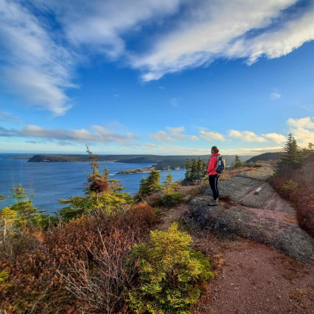 A hiker ventures up the scenic Deadman's Bay Path of the East Coast Trail. (Heidi Murphy/Submitted by East Coast Trail Association - image credit)
