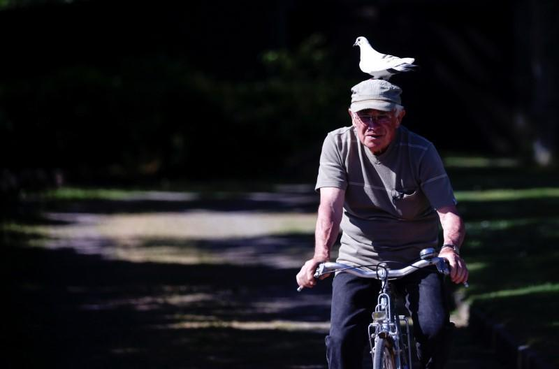 Xavier Bouget, who built a strong relation with a wild pigeon, rides his bicycle in Gommenec'h