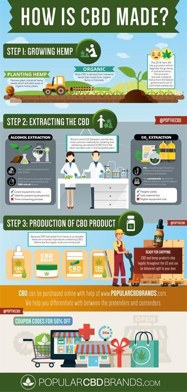 , Which CBD Oil Brands Should You Trust?, The CBD Fact, The CBD Fact