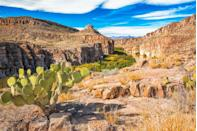 """<p><strong>The Drive:</strong> Gateway to Big Bend</p><p><strong>The Scene:</strong> Take the scenic route to <a href=""""https://www.tripadvisor.com/Tourism-g60733-Big_Bend_National_Park_Texas-Vacations.html"""" rel=""""nofollow noopener"""" target=""""_blank"""" data-ylk=""""slk:Big Bend National Park"""" class=""""link rapid-noclick-resp"""">Big Bend National Park</a> on this two-hour drive from <a href=""""https://www.tripadvisor.com/Tourism-g56228-Marathon_Texas-Vacations.html"""" rel=""""nofollow noopener"""" target=""""_blank"""" data-ylk=""""slk:Marathon, Texas"""" class=""""link rapid-noclick-resp"""">Marathon, Texas</a>. On the way, you'll get the best vistas of the <a href=""""https://www.tripadvisor.com/Attraction_Review-g60733-d144706-Reviews-Chisos_Mountains-Big_Bend_National_Park_Texas.html"""" rel=""""nofollow noopener"""" target=""""_blank"""" data-ylk=""""slk:Chisos Mountains"""" class=""""link rapid-noclick-resp"""">Chisos Mountains</a>, and once you arrive at the park, hop on the Rio Grande River Road for more incredible views of the surrounding areas including Mexico. </p><p><strong>The Pit-Stop:</strong> Prepare to leave behind civilization on this journey! One of the many interesting features of this 80-mile trip is the fact that Big Bend National Park is far away from it all, so the only stop you'll be making here is at the beautiful national park. Though with incredible mountains, canyons, and wildlife all around, you may want to pull over to take a view photos on the way. </p>"""