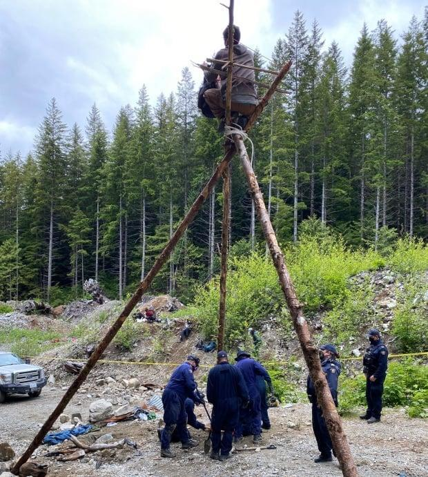 Mounties say they removed an old-growth logging protester from a 'tripod structure' at an encampment near Port Renfrew on Thursday. (B.C. RCMP - image credit)