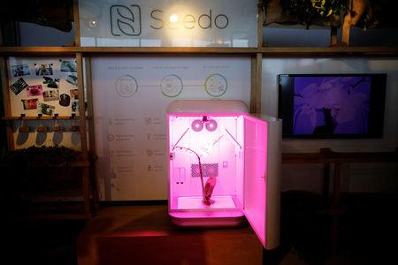 An autonomous cannabis-growing device by Israeli company, Seedo, is displayed with an orchid inside it, at an exhibition stand during Cannatech 2017, an annual global cannabis industry event, in Tel Aviv, Israel March 20, 2017. Picture taken March 20, 2017. REUTERS/Amir Cohen