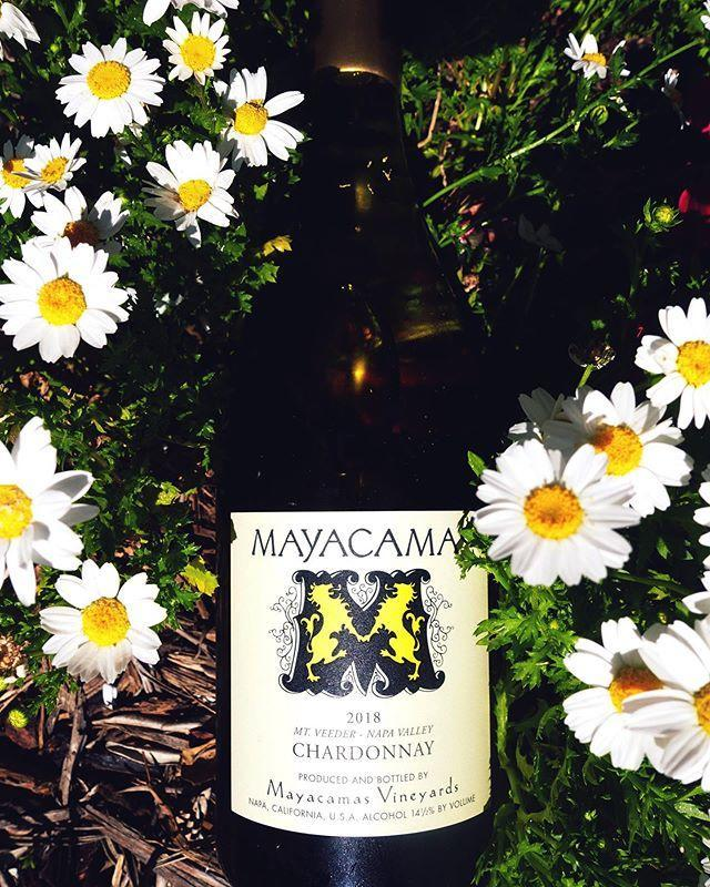 "<p><strong>Best for:</strong> Napa die-hards</p><p>If you're after big Cali wine vibes, Mayacamas Vineyards' membership gives you insider access to their seasonal releases, access to their collection of rare wines, <em>and</em> a complementary vineyard visit for four every year. (Vino vacay, anyone?)</p><p><strong>How it works:</strong> All members receive two annual shipments. of half Chardonnay and half Cabernet Sauvignon. Silver members receive three bottles of each, while Gold members get six of each and Platinum members score six bottles of Chardonnay, 12 of Cab, <em>and</em> two magnums.</p><p><strong>Pricing:</strong> You'll pay $525 annually for a Silver membership, $1,050 for Gold, and $2,200 for Platinum (plus shipping).</p><p><a class=""link rapid-noclick-resp"" href=""https://mayacamas.com/membership"" rel=""nofollow noopener"" target=""_blank"" data-ylk=""slk:TRY MAYACAMAS"">TRY MAYACAMAS</a></p><p><a href=""https://www.instagram.com/p/B9FrmcPJbI5/"" rel=""nofollow noopener"" target=""_blank"" data-ylk=""slk:See the original post on Instagram"" class=""link rapid-noclick-resp"">See the original post on Instagram</a></p>"
