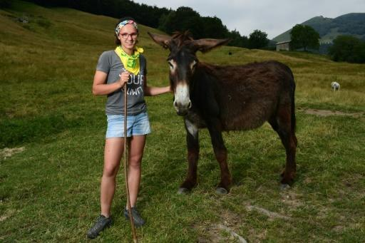 Vanessa Peduzzi is a trained chef, but has downed her ladles to become a donkey and cow breeder