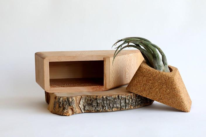 A triangular wooden container and its top that holds the succulent rest on a cross-section of a log