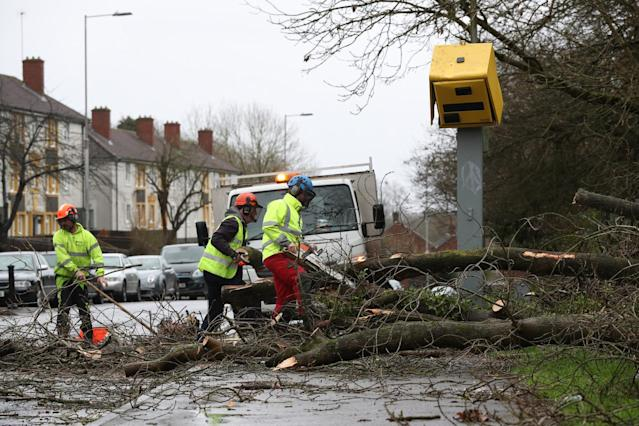 Workmen clear up after tree fell on speed camera and damaged it on The Meadway in Tilehurst. (PA)