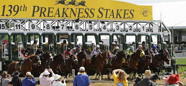 Horses leave the starting gate for the first race of the day ahead of the 139th Preakness Stakes horse race at Pimlico Race Course, Saturday, May 17, 2014, in Baltimore. The race was taken of the turf. (AP Photo/Garry Jones)