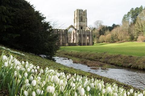 Fountains Abbey - Credit: national trust
