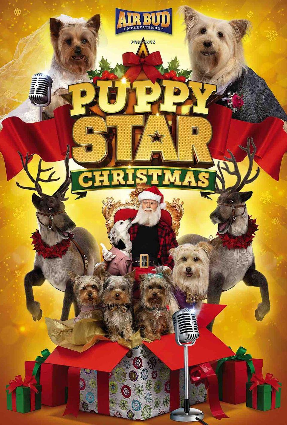 """<p>When a gang of mischievous dogs hijacks Santa Claus and the North Pole, it's up to four brave puppies to save Christmas.</p><p><a class=""""link rapid-noclick-resp"""" href=""""https://www.netflix.com/title/80989043"""" rel=""""nofollow noopener"""" target=""""_blank"""" data-ylk=""""slk:STREAM NOW"""">STREAM NOW</a></p>"""
