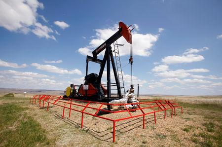 FILE PHOTO: A Canadian Natural Resources pump jack pumps oil out of the ground near Dorothy