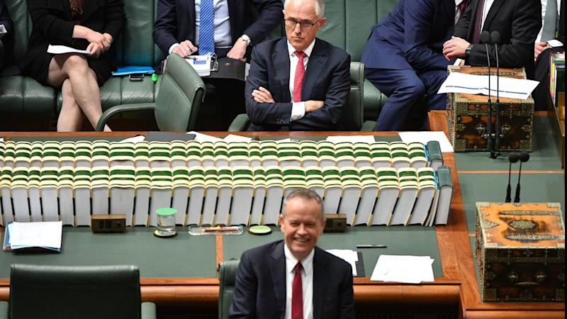 Mr Turnbull's lead over Bill Shorten as preferred prime minister has been cut from 19 to 12 points