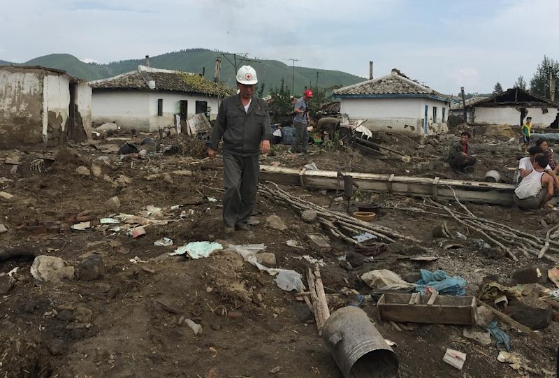 A Red Cross official inspects the damage caused by heavy flooding of the Tumen river in North Korea's Hamyong province (AFP Photo/Murat Sahin)