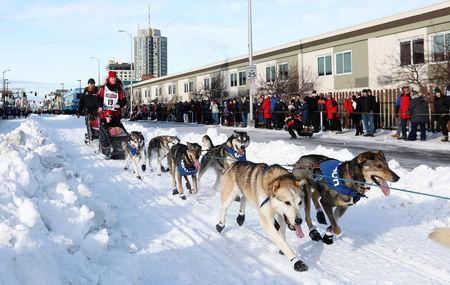 FILE PHOTO: Aliy Zirkle and her dogs head out at the ceremonial start of the 47th Iditarod Trail Sled Dog Race in Anchorage, Alaska, U.S. March 2, 2019. REUTERS/Kerry Tasker/File Photo