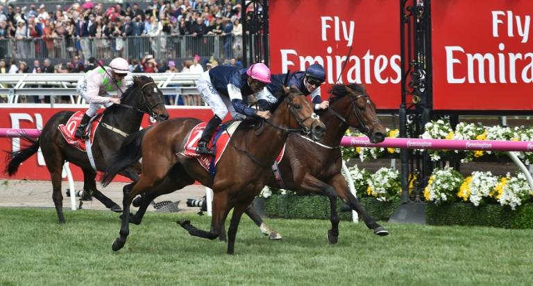 melbourne cup sweep 2017 pdf