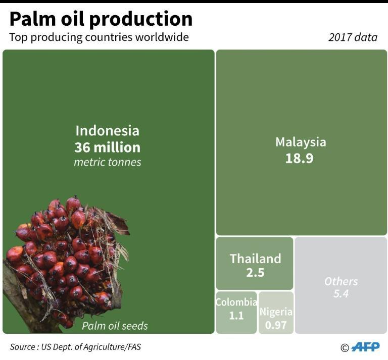 Chart showing top producers of palm oil, led by Indonesia