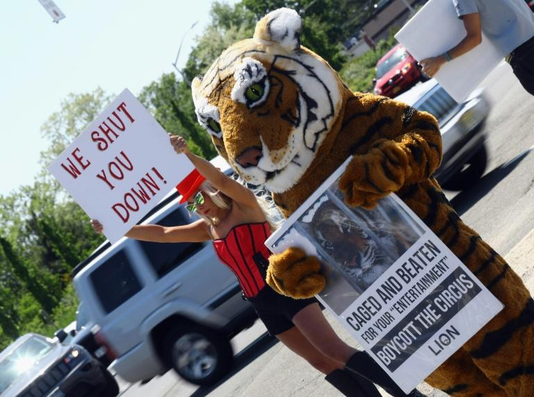 Campaigners for People for the Ethical Treatment of Animals (PETA) demonstrate on the final day of the Ringling Bros. and Barnum & Bailey circus in Uniondale, New York, on May 21, 2017