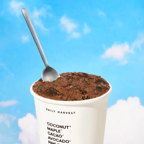 """<h3>Daily Harvest Chocolate + Ooey, Gooey, Midnight Fudge Ice Cream<br></h3><br>""""I am obsessed with chocolate ice cream — it's my favorite dessert, and something I like to keep in my freezer for when I need something sweet. Recently, I was able to try out Daily Harvest's Chocolate + Ooey, Gooey, Midnight Fudge flavor, and tbh, it blew me away. It's gluten-free and dairy-free, which are two qualifications I don't usually follow in the things that I eat, but I didn't even notice. I'll be repurchasing this in the future for sure."""" — <em>Elizabeth Gulino, Health + Wellness writer</em><br><br><strong>Daily Harvest</strong> Chocolate + Ooey, Gooey, Midnight Fudge Ice Cream, $, available at <a href=""""https://go.skimresources.com/?id=30283X879131&url=https%3A%2F%2Fwww.daily-harvest.com%2Fbrowse%2Fscoops%2Fchocolate-ooey-gooey-midnight-fudge"""" rel=""""nofollow noopener"""" target=""""_blank"""" data-ylk=""""slk:Daily Harvest"""" class=""""link rapid-noclick-resp"""">Daily Harvest</a>"""