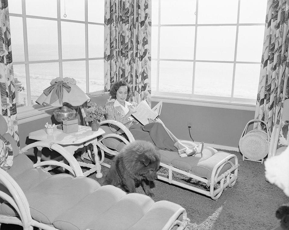 <p>Taking a break from the action, actress Merle Oberon is seen reading something other than a script as her pet chow, Luke, joins her for the relaxing moment. </p>