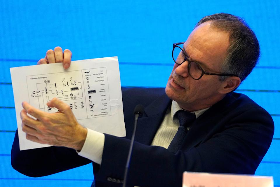 """In this Feb. 9, 2021, file photo, Peter Ben Embarek of the World Health Organization team holds up a chart showing pathways of transmission of the virus during a joint news conference at the end of the WHO mission in Wuhan in central China's Hubei province. A joint WHO-China study on the origins of COVID-19 says that transmission of the virus from bats to humans through another animal is the most likely scenario and that a lab leak is """"extremely unlikely,"""" according to a draft copy obtained by The Associated Press."""