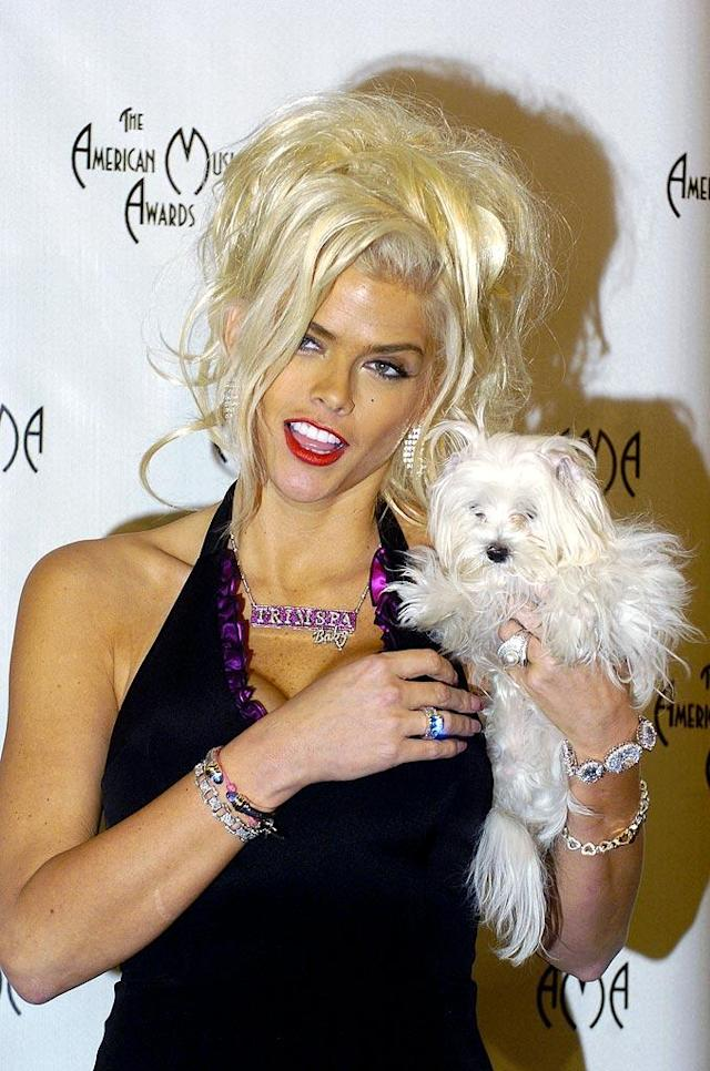 "Anna Nicole Smith introduces her dog to the media in the press room at the 32nd Annual American Music Awards. Steve Granitz/<a href=""https://ec.yimg.com/ec?url=http%3a%2f%2fwww.wireimage.com%26quot%3b&t=1519291480&sig=zbYPGaEYCW._ZbkS.AS3sw--~D rel=""nofollow noopener"" target=""_blank"" data-ylk=""slk:WireImage.com"" class=""link rapid-noclick-resp"">WireImage.com</a> - November 14, 2004"