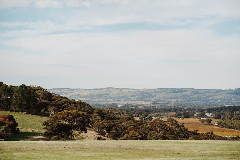 The stunning view from Never Never Distilling Co. nestled in Adelaide's McLaren Vale. Photo: supplied.