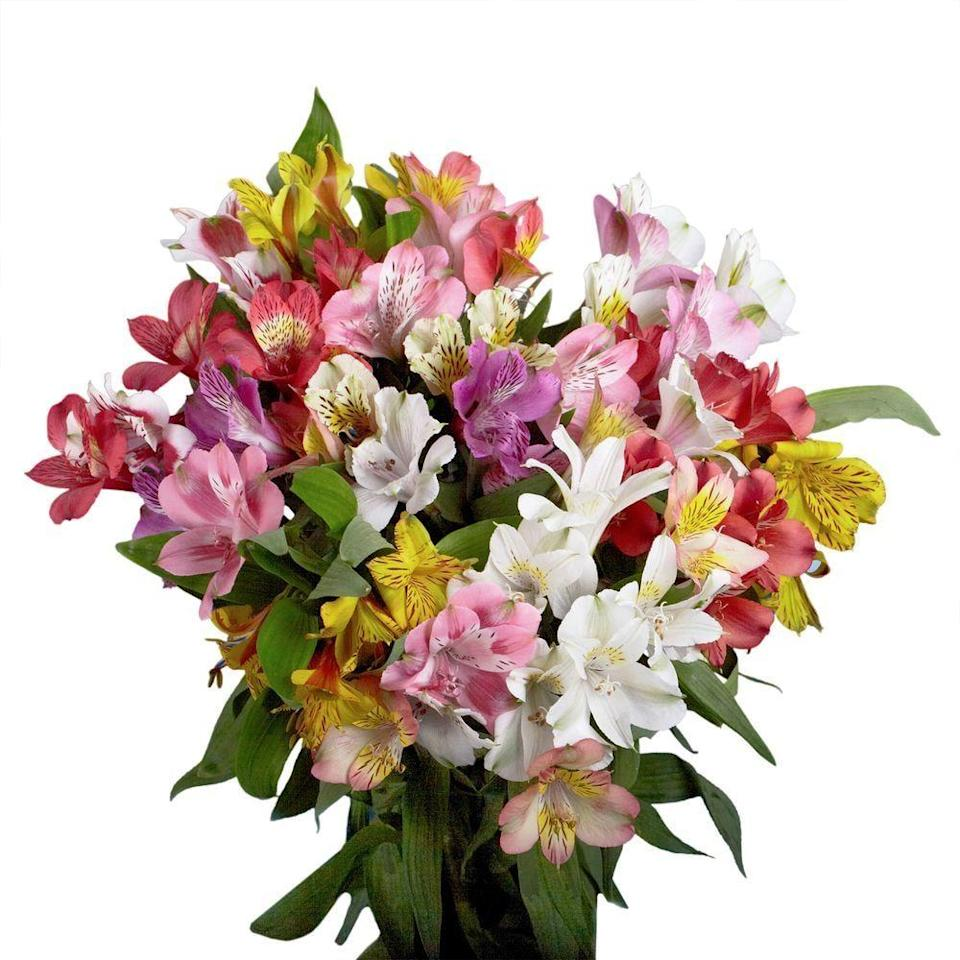 """<p>Pair the <a href=""""https://www.popsugar.com/buy/Globalrose-Fresh-Alstroemeria-Flowers-444316?p_name=Globalrose%20Fresh%20Alstroemeria%20Flowers&retailer=homedepot.com&pid=444316&price=103&evar1=casa%3Aus&evar9=46127505&evar98=https%3A%2F%2Fwww.popsugar.com%2Fhome%2Fphoto-gallery%2F46127505%2Fimage%2F46128495%2FGlobalrose-Fresh-Alstroemeria-Flowers&list1=shopping%2Cgift%20guide%2Cflowers%2Chouse%20plants%2Cplants%2Cmothers%20day%2Cgifts%20for%20women&prop13=api&pdata=1"""" class=""""link rapid-noclick-resp"""" rel=""""nofollow noopener"""" target=""""_blank"""" data-ylk=""""slk:Globalrose Fresh Alstroemeria Flowers"""">Globalrose Fresh Alstroemeria Flowers </a> ($103) with a gorgeous vase, and prepare to be the favorite child.</p>"""