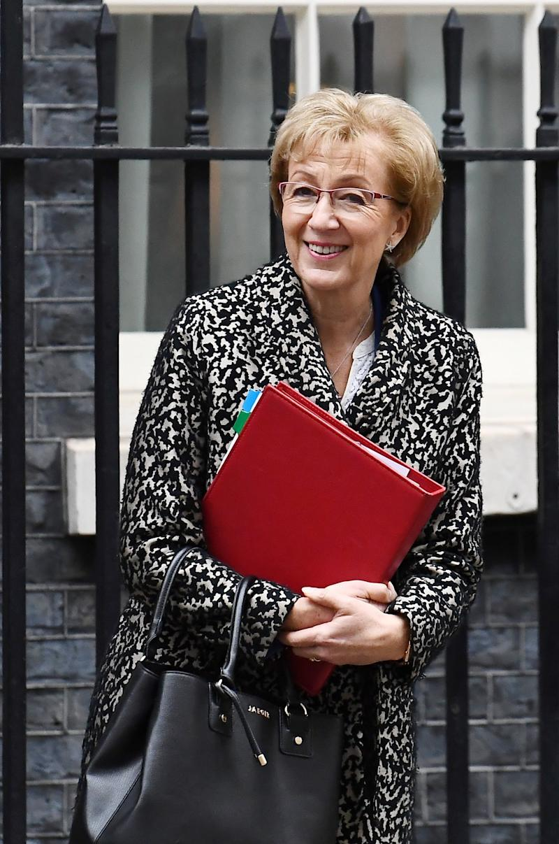 Andrea Leadsom revealed the new date for the next Brexit vote in the Commons on Thursday (REUTERS)