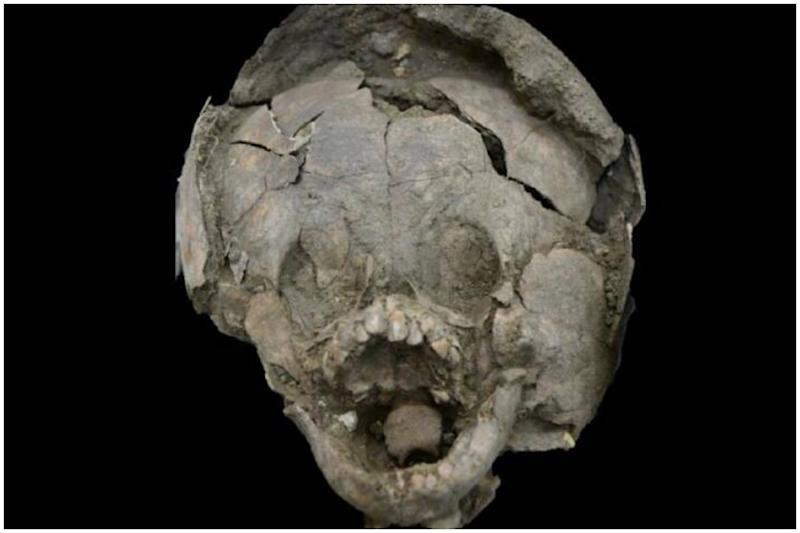 Babies Buried Wearing 'Helmets' Made of Skulls of Other Children Discovered in Ecuador