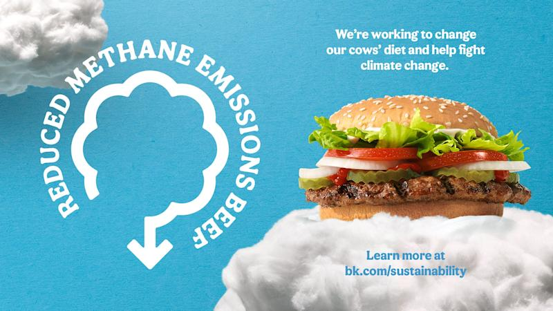 Burger King's new menu item aims to tackle the environmental impact of beef.