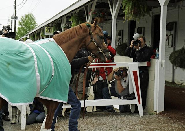California Chrome walks into Barn 20 at Churchill Downs for the Kentucky Derby in Louisville, Ky., Monday, April 28, 2014. California Chrome has won his last four races by a combined 24 lengths