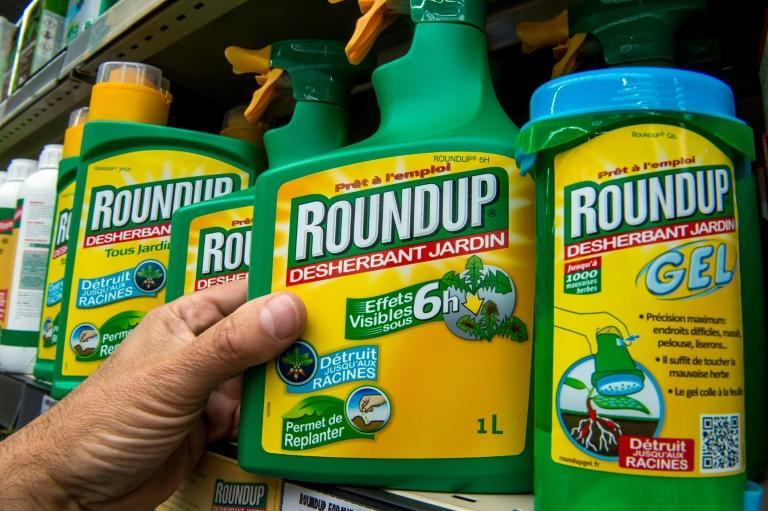 Bayer, which now owns Roundup, insists that the main ingredient, glyphosate, is safe, but the firm continues to face litigation (AFP/Philippe HUGUEN)
