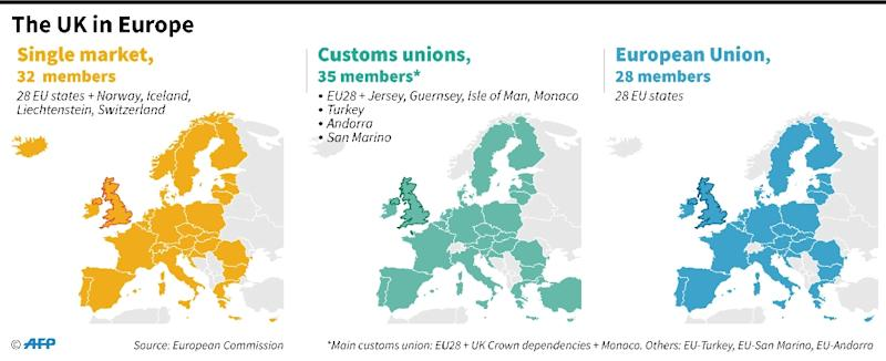 Where the UK sits in relation to the European Union, the European single market and the EU's 4 customs unions (AFP Photo/)