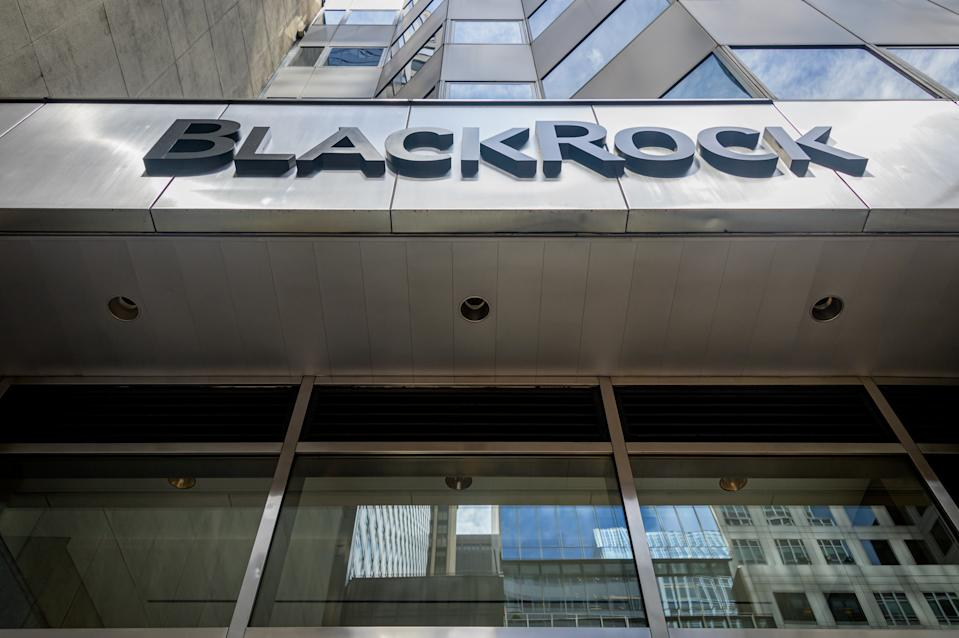 BlackRock joins other strategic investors in the company including Hyundai, Kia and UPS. Photo by Erik McGregor/LightRocket via Getty Images