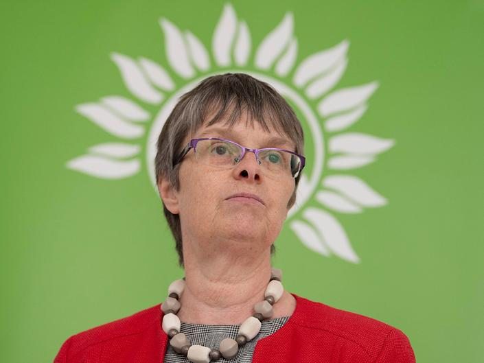Green MEP Molly Scott Cato during the launch of the Green Party Brexit policy at the Space Studio in London: PA