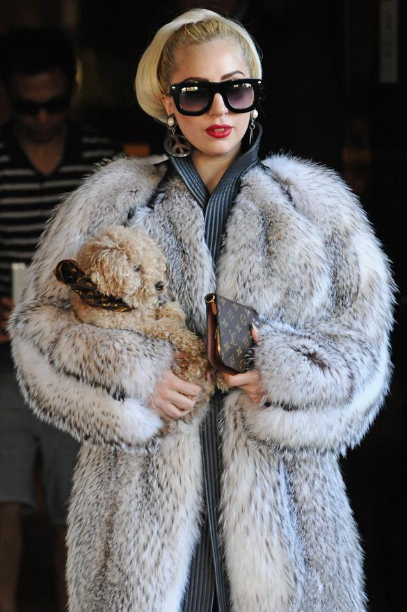 Lady Gaga Apologises To Fans For Promoting Fur