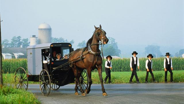 Ohio Amish Attacked by Beard- and Hair-Cutters (ABC News)