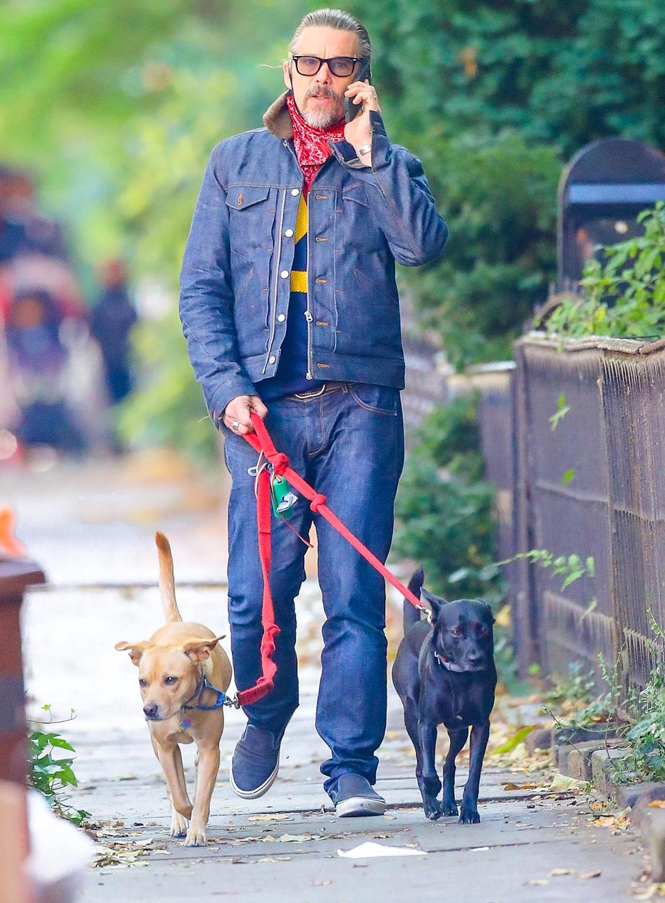 <p>Birthday boy Ethan Hawke, who turns 50 on Friday, chats on the phone while walking his dogs through N.Y.C.</p>