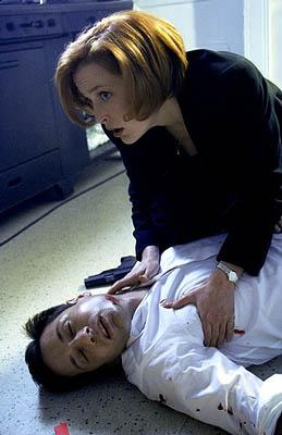 "Agent Scully (Gillian Anderson) finds Agent Mulder (David Duchovny) collapsed from snake bites in the ""Signs and Wonders"" episode of Fox's The X-Files X-Files"