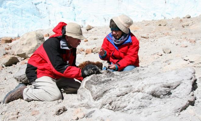 Ohio State University glaciologist Lonnie Thompson and a colleague examines dried parts of the Quelccya ice cap in this undated photo.