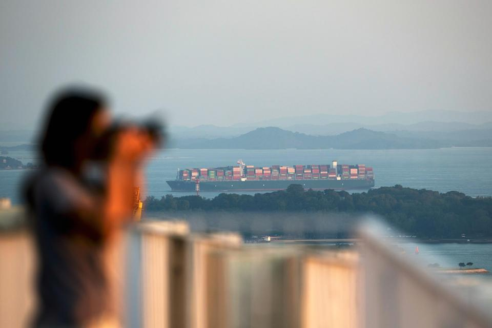 A visitor taking a photograph while a container ship sails past Sentosa Island are seen from the skybridge at the Pinnacle@Duxton. (Getty Images file photo)