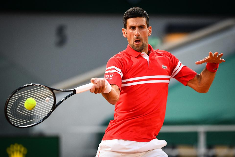 Novak Djokovic (pictured) hits a forehand during the French Open.