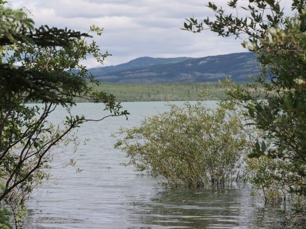 Water has been rising on Lake Laberge as well as Tagish, Bennett and Marsh Lakes. The territorial government declared a state of emergency on Friday evening. (Vincent Bonnay/Radio-Canada - image credit)