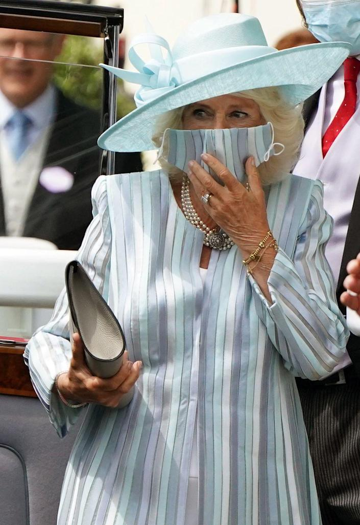 <p>Camilla perfectly matched her mask to her outfit. </p>